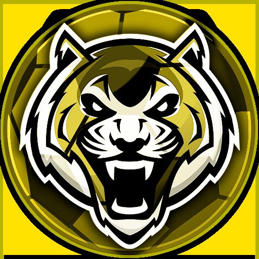 Correct Score Logo.